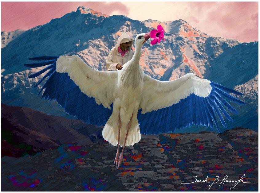 08loiseau-migrateur-2016-03-03-a-12-04-33